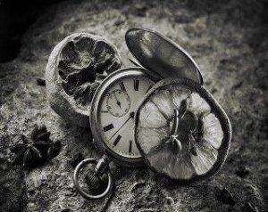 Quiero ser en tu vida algo mas que un instante,algo mas que una sombra y algo mas que un afan, quiero ser en ti mismo una huella imborrable y un recuerdo constante.....
